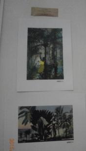 prints_4