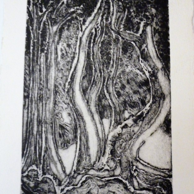 Print from Copper Plate - series 3 of 4